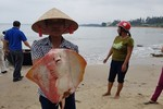Mức bồi thường cho 7 nhóm đối tượng bị thiệt hại do sự cố môi trường biển
