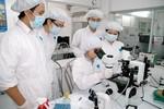 Thủ tướng yêu cầu đẩy mạnh phát triển khoa học và công nghệ