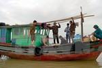 Phạt nặng những trường hợp vi phạm trong hoạt động thủy sản