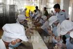 Cục An toàn thực phẩm đề nghị cắt giảm nhiều thủ tục hành chính