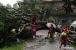 Người dân Philippines oằn mình chống chọi siêu bão Bopha