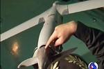 Iran khai thác dữ liệu chiếc UAV của Mỹ vừa bắt sống