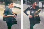 Fox News: Malaysia có thể cố che giấu thông tin vụ máy bay mất tích