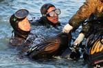 Một thợ lặn Hàn Quốc thiệt mạng khi tìm kiếm thi thể nạn nhân chìm phà
