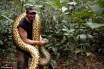 Thử thách chấn động: Tự nguyện cho trăn khổng lồ Anaconda nuốt sống