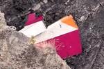 Những hình ảnh đầu tiên từ hiện trường rơi máy bay tại Pháp