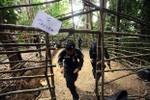 Thái Lan: Phát hiện thêm trại buôn người mới với nhiều thi thể