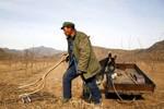 Nga tranh cãi dữ dội về việc cho Trung Quốc thuê đất nông nghiệp
