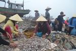 Ảnh: Kinh hoàng cảnh tượng rác thải tại xã biển Ngư Lộc