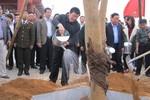 Chủ tịch nước Trương Tấn Sang phát động Tết trồng cây Xuân Giáp Ngọ