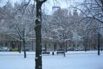 Nhiệt độ -20độ C, tuyết phủ trắng xóa toàn thành phố Uppsala-Thụy Điển