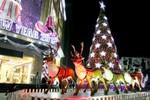 5 điểm đến tràn ngập không khí Giáng sinh nhất ở thủ đô