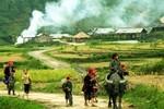 """Báo Tây """"chê"""" giá cả hàng hóa Việt đắt đỏ"""