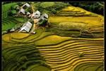 """Chuyên gia """"soi"""" slogan ngành du lịch Việt"""