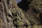 Video: Thót tim cảnh cheo leo dọn rác quanh đỉnh Fansipan