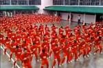 1000 tù nhân cuồng nhiệt nhảy Gangnam Style