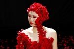 Mai Giang trở thành quán quân VN's Next Top Model 2012