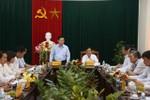 Trưởng Ban Kinh tế Trung ương làm việc với Tỉnh ủy Ninh Thuận