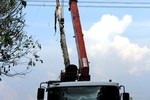 EVN chưa có phương án chuẩn bị trước cho sự cố mất điện toàn Miền Nam?