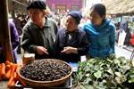 Người Hà Nội tấp nập đi chợ quê