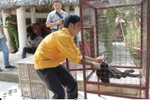 Chuyên án giải cứu 11 cá thể động vật hoang dã trong sách đỏ