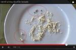 Video: Nhan nhản vật thể lạ trong thực phẩm chức năng Herbalife F1