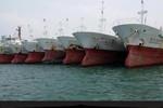 Đại gia mua 100 tàu cá bằng 70% vốn vay: Dự án táo bạo, rủi ro cao!