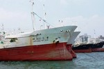 Đại gia BĐS mua 100 tàu cá: Dư luận bị đánh lừa bởi dự án hoang tưởng