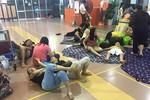 """Hành khách vạ vật suốt đêm tại sân bay, Vietnam Airlines nói """"không sai"""""""