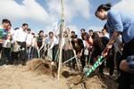 Vinamilk trồng hơn 10.000 cây xanh tại Khu di tích Đường Hồ Chí Minh trên biển