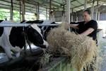 """Lại đề nghị mua sữa, Vinamilk không thể mãi là """"phao cứu sinh"""""""