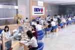 BIDV lãi 6.377 tỷ đồng sau thuế năm 2015