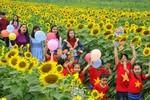 Việt Nam sẽ có thêm nhiều tỷ phú khi kết hợp nông nghiệp với du lịch