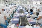 Úc tiếp tục nhập khẩu tôm tẩm ướp và thịt tôm tẩm ướp của Việt Nam