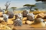 Phát sốt clip 'khi động vật trên trái đất hình tròn'