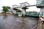 Hà Nội ra quyết định khẩn: Xả nước sông Nhuệ cứu ngoại thành