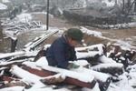 Sapa thiệt hại lớn vì mưa tuyết