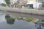 Dòng kênh xanh tốn ngàn tỷ ở Sài Gòn chỉ mới khánh thành giai đoạn 1