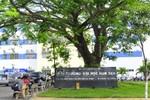 Bộ GD&ĐT: Đại học Hoa Sen vẫn chỉ là trường Đại học tư thục