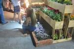Những điều chưa đẹp ở đường hoa Nguyễn Huệ
