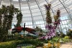Vinpearl Land mở cửa Đồi Vạn Hoa - Công việc thực vật độc đáo nhất Việt Nam