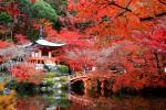 Xu hướng du lịch mùa thu năm nay là gì?