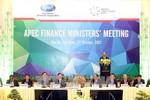 Việt Nam khẳng định vị thế, vai trò nước chủ nhà APEC 2017