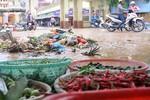 Làm thế nào để bảo đảm an toàn thực phẩm trong mùa mưa bão năm 2017?