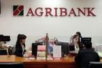 Agribank chọn cách chi thêm nhiều tỷ đồng in lịch Tết cho...nhàn thân?