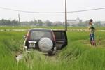 Ô tô đâm thiếu nữ đi bắt cua nguy kịch rồi lao xuống ruộng lúa