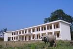 Trường tiền tỷ xây xong để … chăn trâu bò