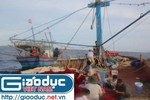 Sóng dậy Biển Đông và 8 ngày đi biển cùng ngư dân xứ Nghệ (Kỳ 4)