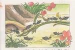 Giật mình với hình minh họa trong sách giáo khoa Tiếng Việt 1