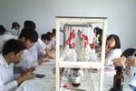Sinh viên Điều dưỡng được nâng cao tay nghề tại CHLB Đức